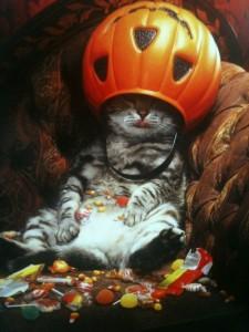 halloween-candy-candy-corn-cat-Favim.com-693217