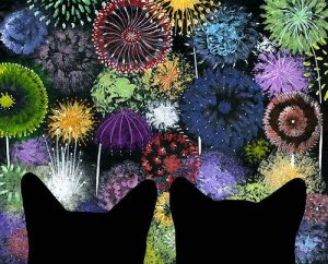 chats-feu-artifice-14-juillet-2012-07-14-10-58